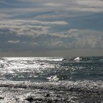 Surf onde alle spiagge bianche