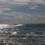 Surf onde alle spiagge bianche (3)